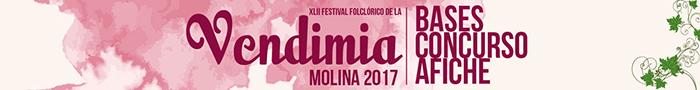 banner-bases-afiche-vendimia-2017